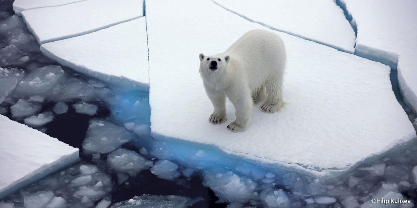 Kuzey Kutbu 90 Derecede Saat Kaç Olur